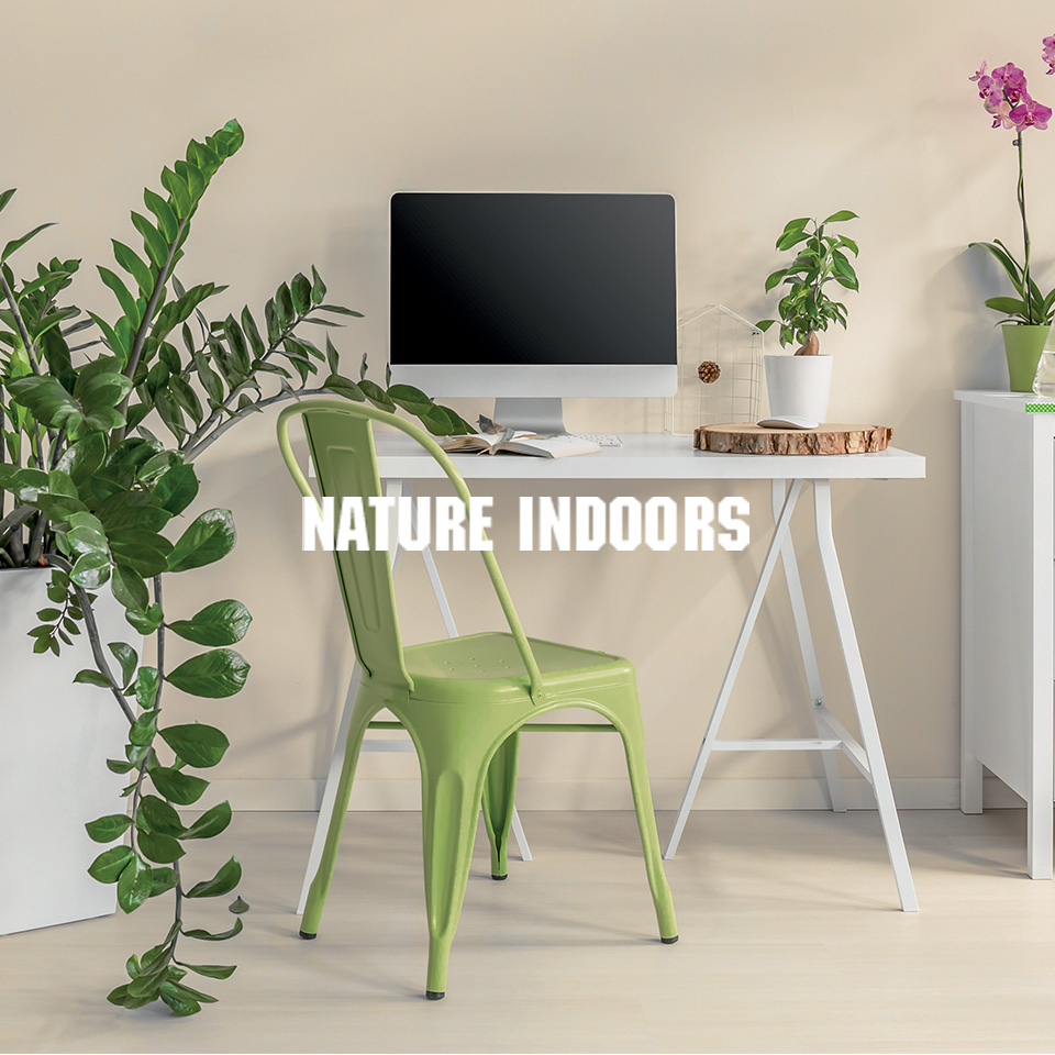 Nature Indoors